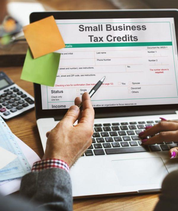 Tax Credit under the Micro Invest Scheme