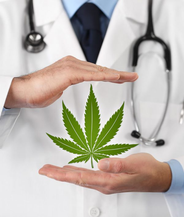 The Production of Cannabis for Medicinal & Research Purposes in Malta